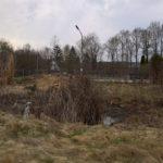 Der Teich nach unserer Aktion