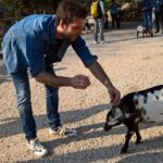Dominik im Streichelzoo streichelt eine Ziege