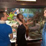 Patrick, Carina und Dominik schauen Terrarium an
