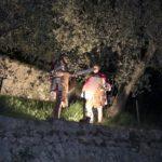 Römische Wachen im Olivenhain